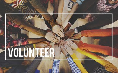 Volunteer Opportunities in Osceola County